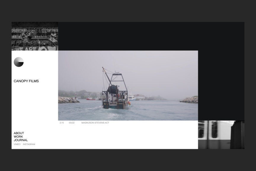 ILVZ Estudio - Canopy Films